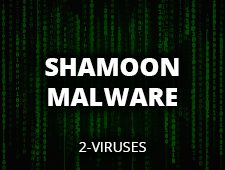 What is Shamoon Virus