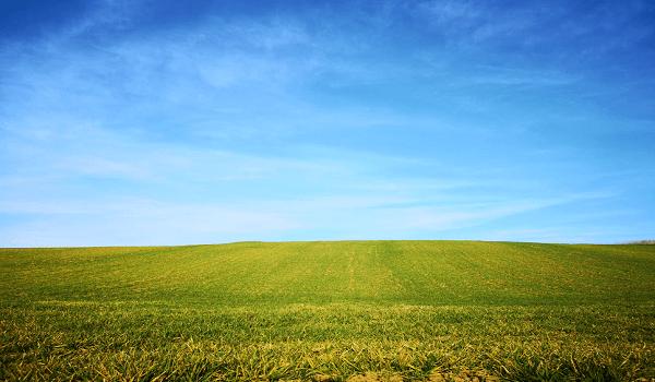 Windows XP Virus Protection